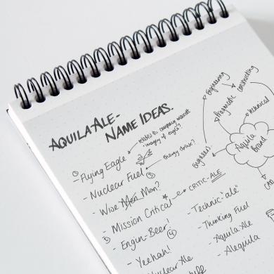 Aquila_Ale_Names | web design portsmouth