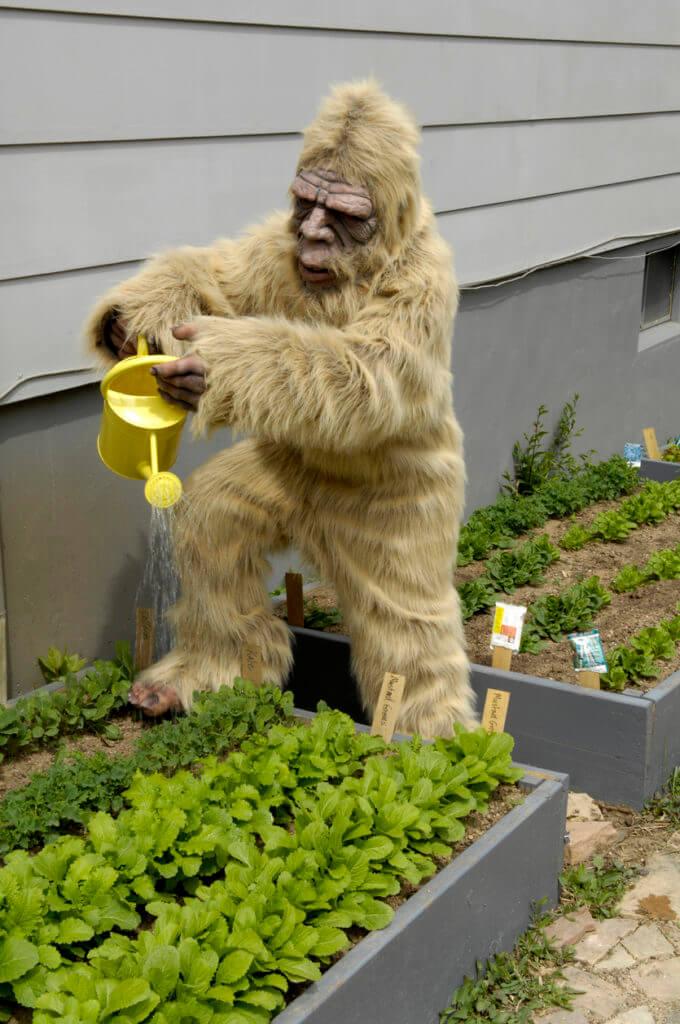 Big Foot Gardening