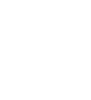 Southampton Airport Logo - Print & Digital Design