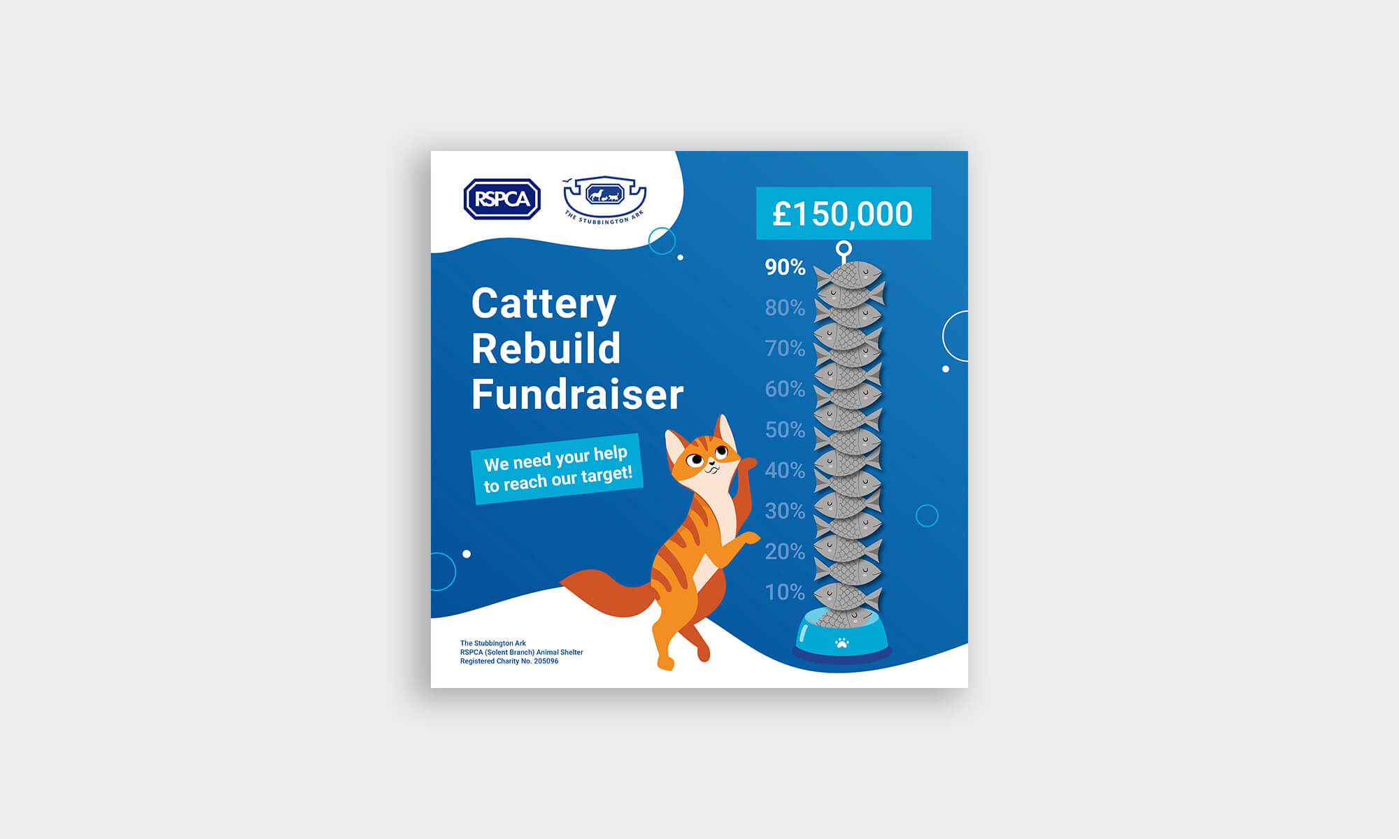 RSPCA_Graphics_Feature_Image